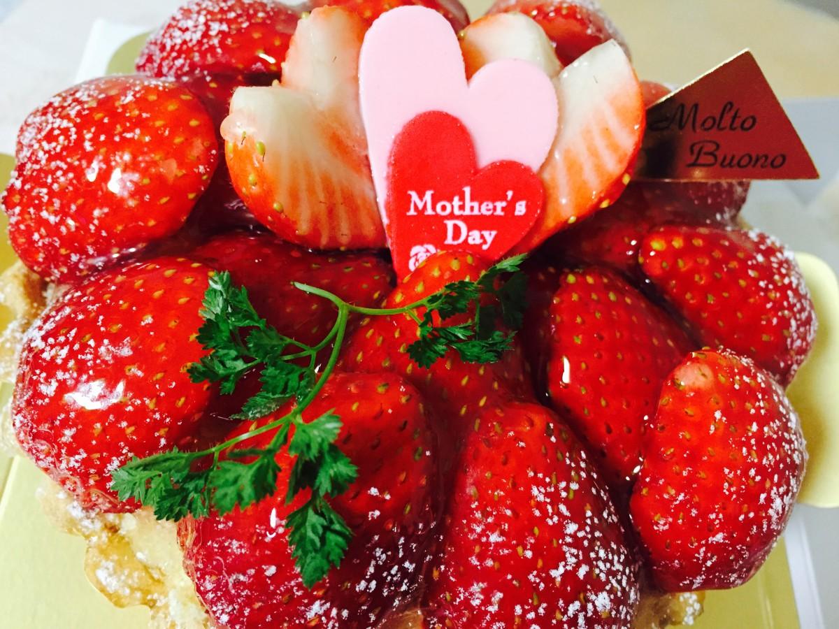 母の日(灬˘╰╯˘灬)♥。・゚